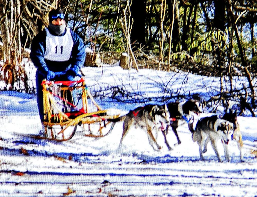 A photograph of a dogsled musher and team of dogs competing in a race in Alaska taken by Joe Albee of Vassalboro.