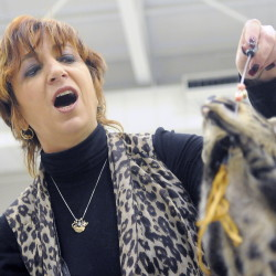 Janet Spain, of Cornwall, N.Y., plays with a Savannah, Black Zahara, that she showed at the NauTICAts cat club show in Augusta on Sunday.
