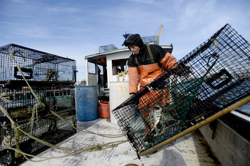 "People in Maine are so accustomed to seeing working lobstermen – like James Rozakis aboard the Nomad last year in Portland Harbor, above – that they take the fishery for granted and don't realize that consumers in the rest of the country crave this kind of intimate connection with a wild food source, according to Nick Branchina, director of marketing for Portland-based Browne Trading Co., a purveyor of seafood. A marketing effort is underway to capitalize on Maine's ""new shell"" lobsters as a seasonal delicacy with a story."