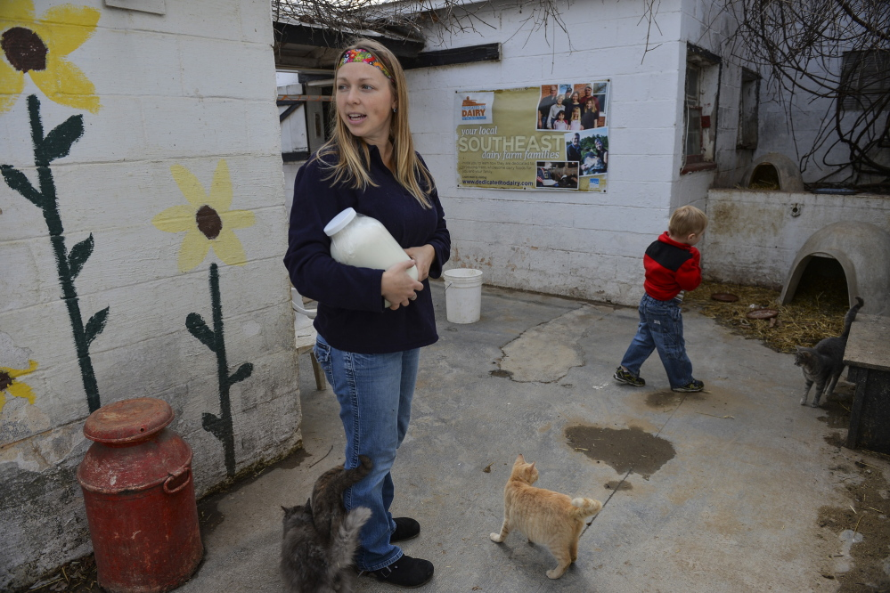 Jen Bernick and son Solomon of Winchester, Va., pick up a gallon of raw milk at Hedgebrook Farm in Winchester. The sale of some form of raw milk is legal in 26 states. 2014 Washington Post File Photo/Ricky Carioti
