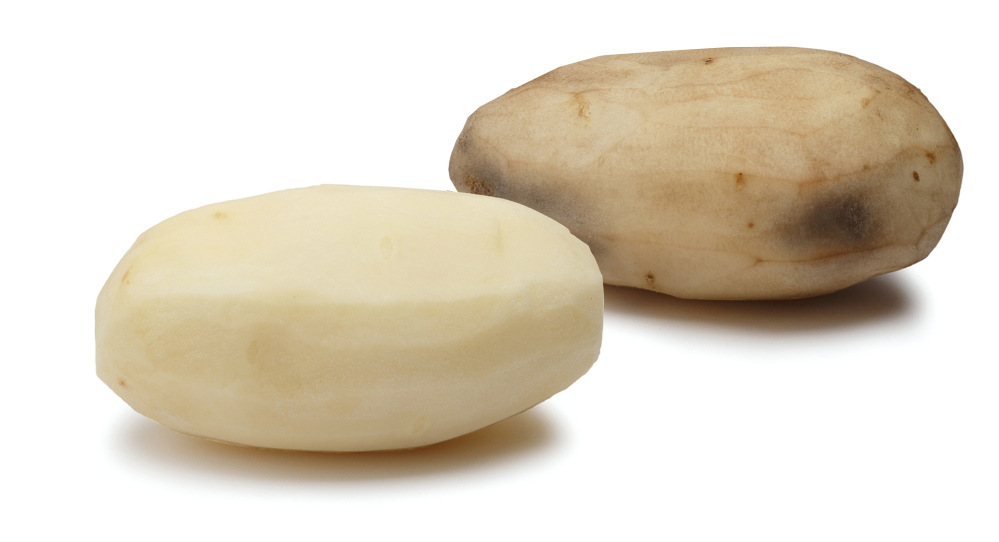 J.R. Simplot Co.'s genetically modified potatoes, among six varieties approved by the Food and Drug Administration on Friday, won't bruise.
