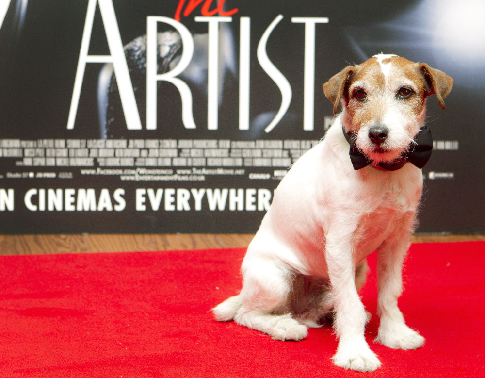 "Uggie, who starred in the film ""The Artist,"" became a canine sensation for his scene-stealing performance in the movie voted Best Picture of 2012. The Jack Russell terrier died Friday."
