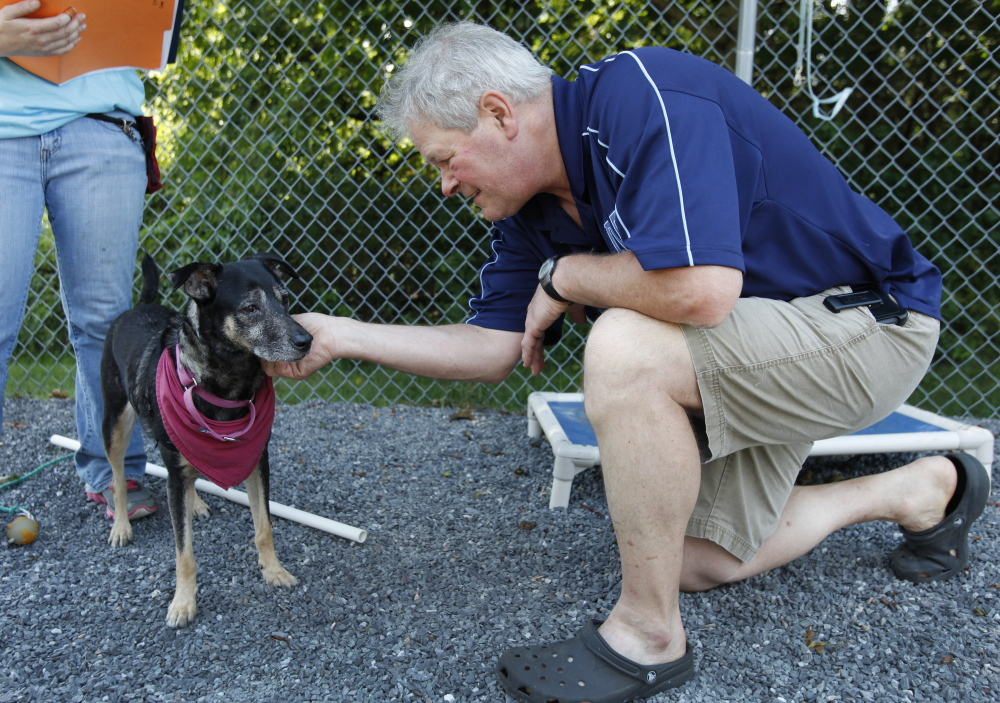 Buddy Whitehouse of Kennebunk greets a dog called Sadie on Saturday during the Animal Refuge League of Greater Portland's Clear the Shelter event in Westbrook. Whitehouse decided to adopt Sadie.   Joel Page/Staff Photographer