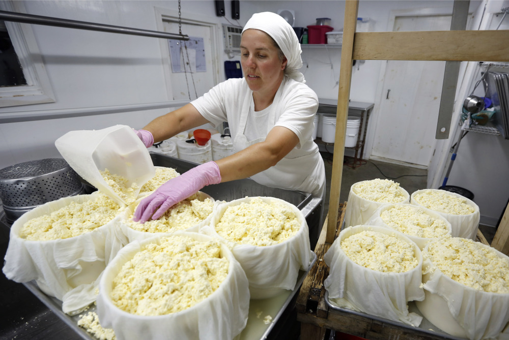 Heather Donahue scoops cheese curds into containers while making gouda at Balfour Farms in Pittsfield. State officials say the number of retail cheesemakers in the state grew from 40 in 2010 to 80 this year.