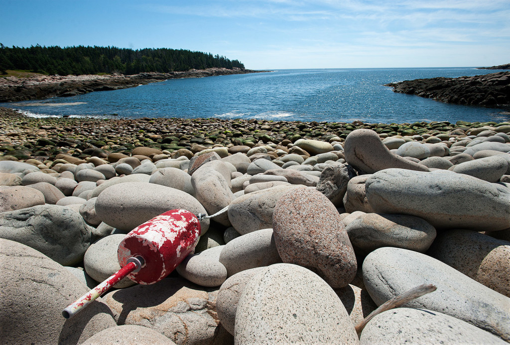 A buoy sits on the rocky shore of West Cove.