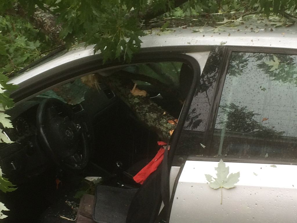 This limb from a falling tree scraped Mary Keefe's face and came within an inch of her head, said South Portland's fire chief. The impact of the crash brought the car to a halt. Photo courtesy South Portland Fire Department