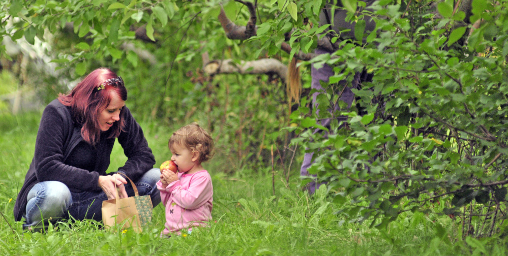 Alex Brokordt chats with Aravis Epley as the 2-year-old's mother, Christina Epley, picks apples Tuesday at Lakeside Orchards in Manchester. The state's apple harvest is running late.