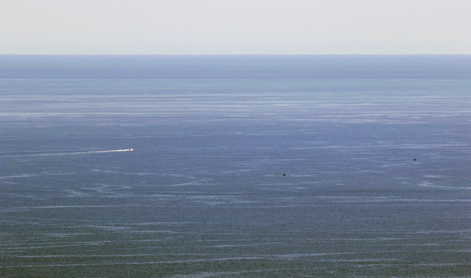 boat heads through gulf