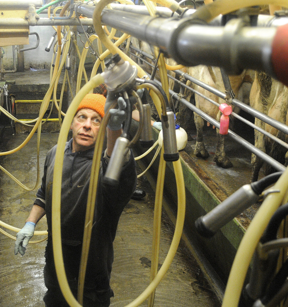 Spencer Aitel of Two Loons Farms tends to his dairy in South China. A Harvard University study finds Maine's food industry fragmented.