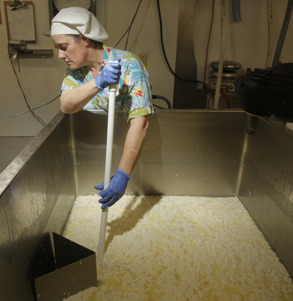 """Cheesemaker Allison Lakin drains whey out of curds while making Opus 42. Lakin says she always wears a Hawaiian shirt while making cheese. """"You can't wear a Hawaiian shirt and be unhappy,"""" she says."""
