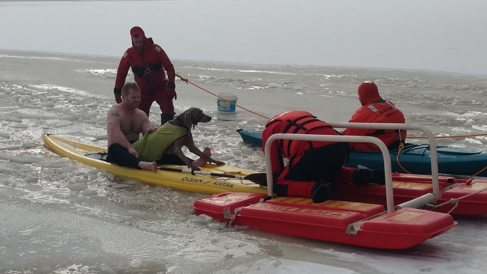 Fryeburg firefighters accompany Chappy the Weimaraner back to shore after rescuing him from Lovewell Pond on Thursday.