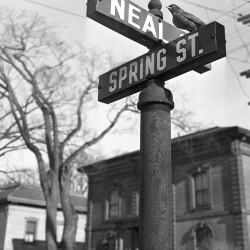 Flashback photos. Neal Street in Portland, 1950.