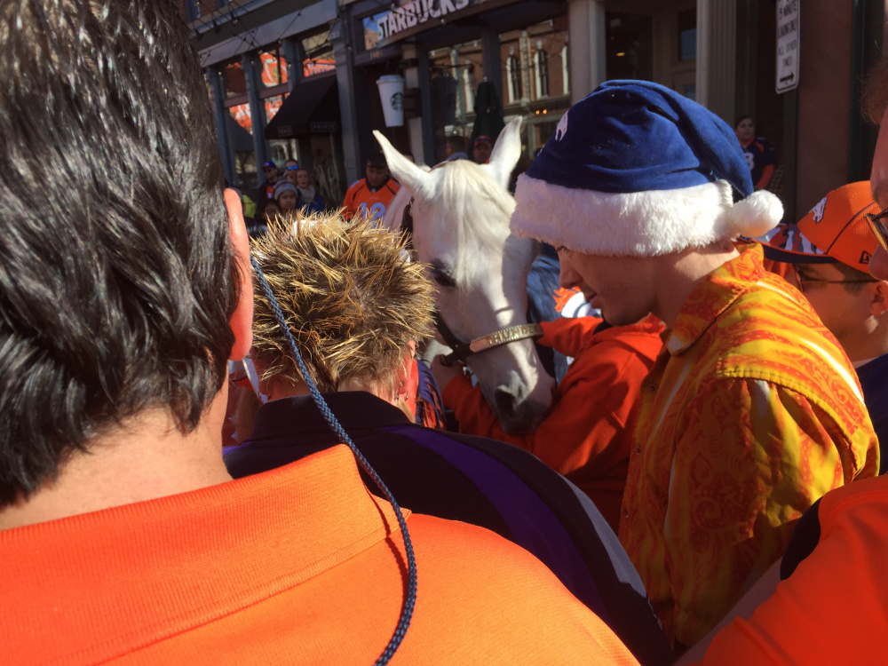 Thunder, the Broncos' real-life mascot, greets fans at a downtown rally Friday at Larimer Square in Denver. Mike Lowe/Staff Writer
