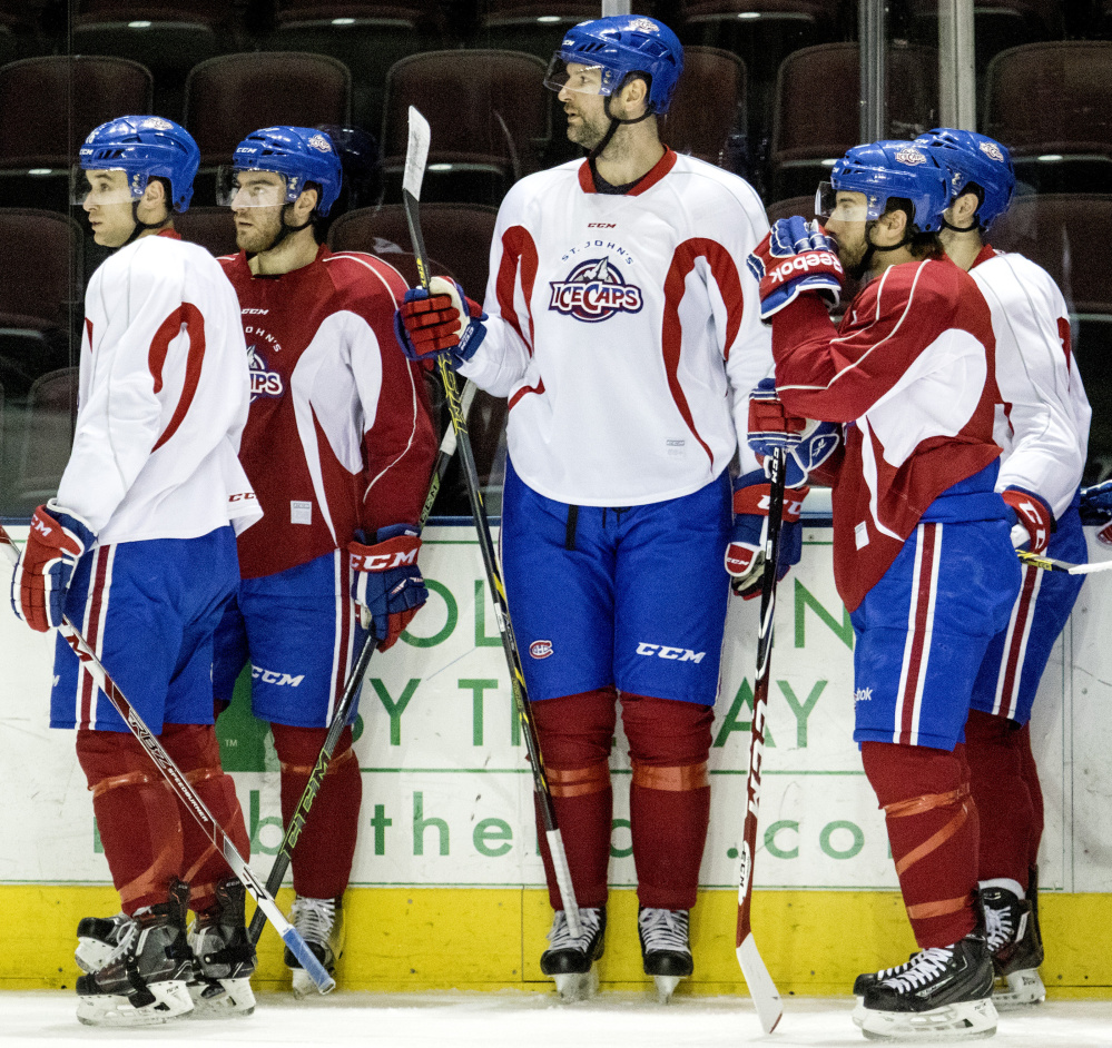 John Scott, who is 6-foot-8, towers over his teammates at practice. He has a grand total of five career goals in the NHL and has racked up 542 penalty minutes while earning a reputation for fighting.