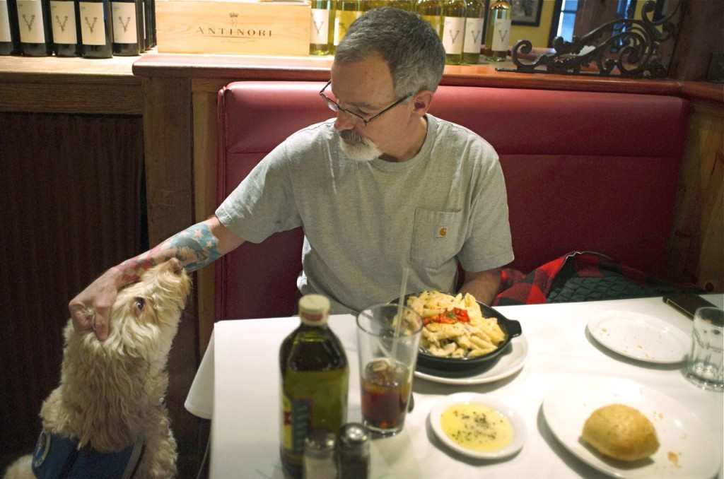 Sean McDonough eats lunch at the Macaroni Grill in South Portland recently with his service dog Bruno at his side. McDonough suffered brain injuries in a car crash in 2008 and depends on Bruno to keep him calm in public settings. Tom Bell/The Associated Press)