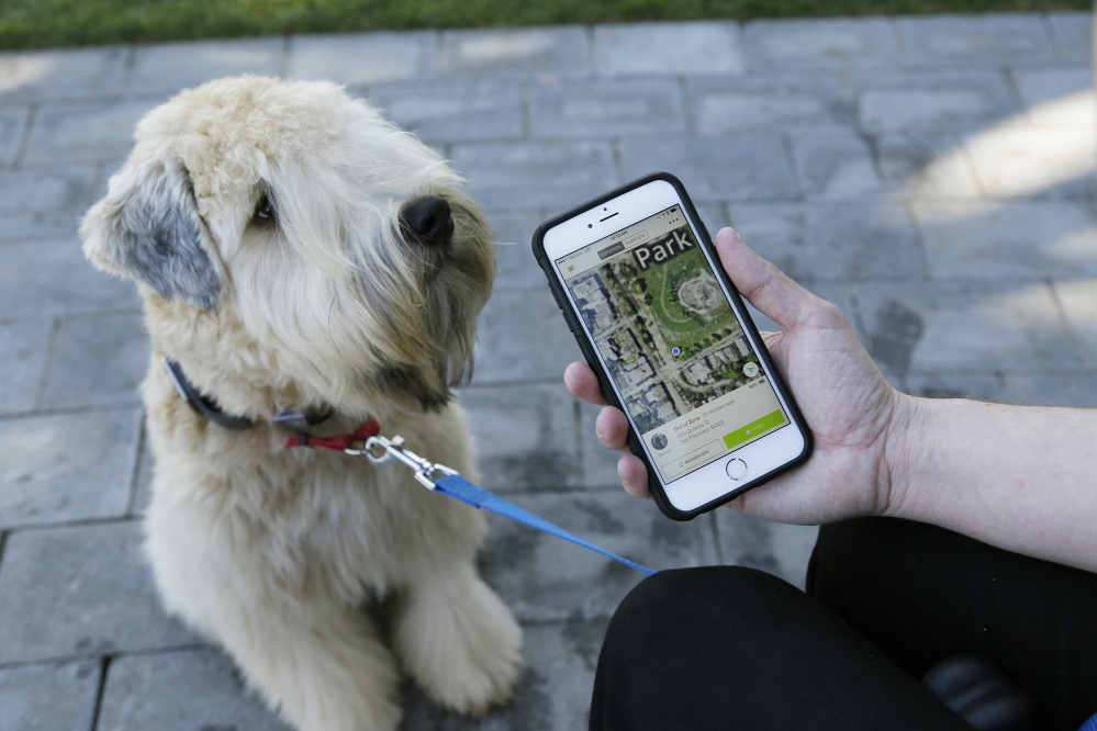 "Russell Gipson Shearer displays on his phone how the Whistle pet tracker follows his dog Rocket in San Francisco. Technology isn't just for humans. It's also for their furry friends. In Silicon Valley and beyond, a growing number of ""pet-tech"" startups are selling devices to keep pets safe, healthy, entertained and connected when their owners are away."