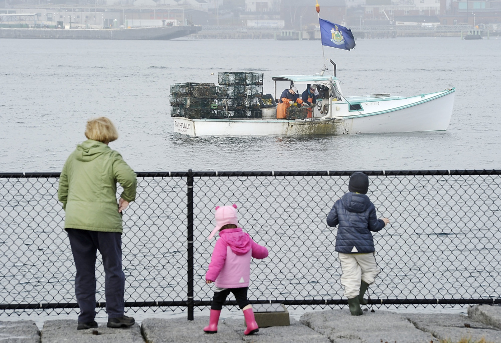Kathy O'Donnell and her grandchildren watch lobstermen near Bug Light Park in South Portland pull in traps in December. Maine lobstermen hauled a record $495 million worth of lobster in 2015, despite a five-year low in the number of pounds caught. Lobsters maintained their dominance of the state's commercial fishery, accounting for more than 80 percent of the entire $616 million industry.  Gordon Chibroski/2015 Press Herald file