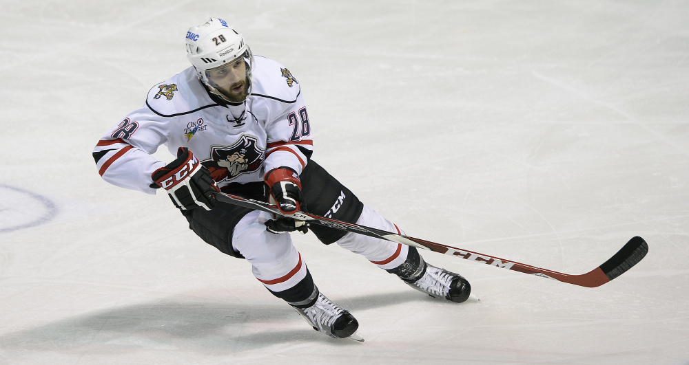 Wade Megan is a fourth-line center for the Portland Pirates who not only kills penalties, but with four short-handed goals is tied for the league lead and is one short of the franchise record. He's also an avid reader, going through about 15 books a year.
