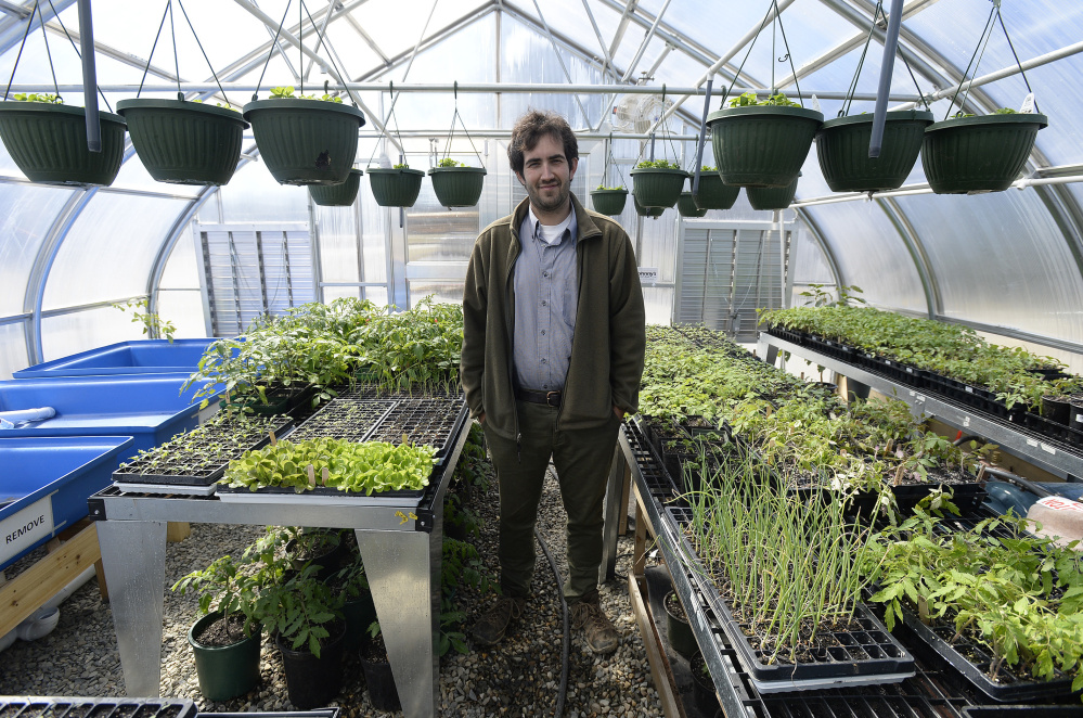 Horticulture teacher Ryan Martin in Isleboro Central School's greenhouse. Students at the school eat the vegetables and fruits they help grow, and fish from the aquaponics program they help manage.