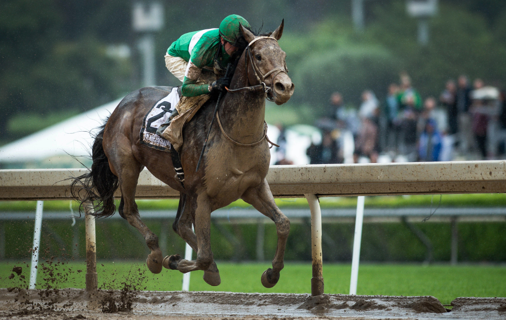 Exaggerator and jockey Kent Desormeaux, winners of the Santa Anita Derby in California in April, are set to challenge Preakness favorite Nyquist on Saturday. Exaggerator has lost four times to Nyquist.
