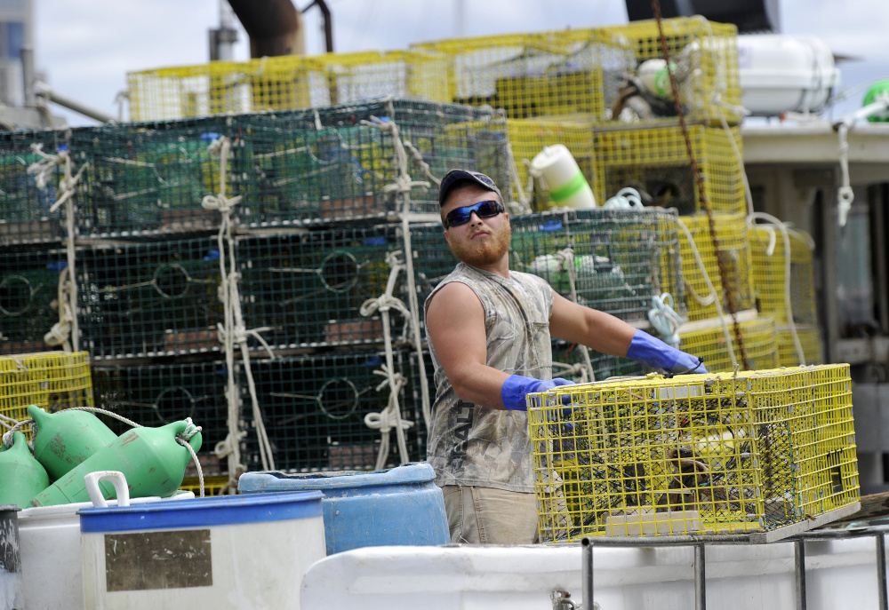 Brandon Bushey loads lobster traps onto a boat while working on Widgery Wharf on Friday.