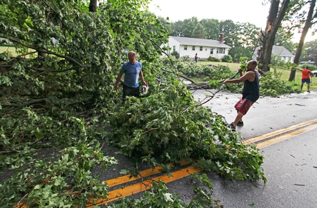 Trees were knocked down by thunderstorms in Eliot on Saturday.