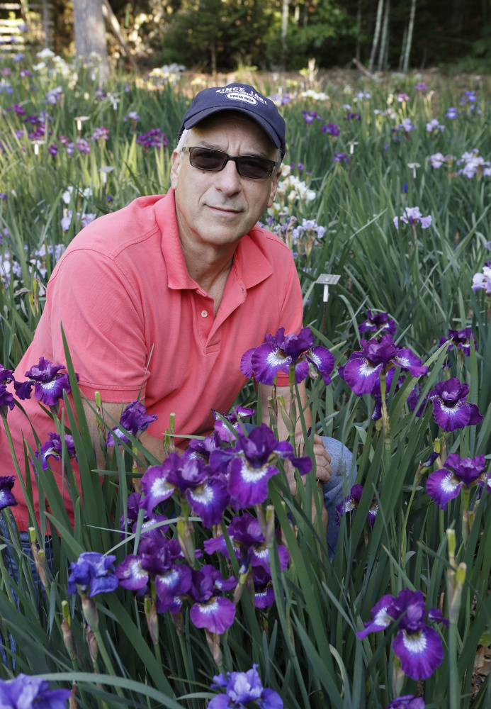 Dean Cole says his hybridized irises