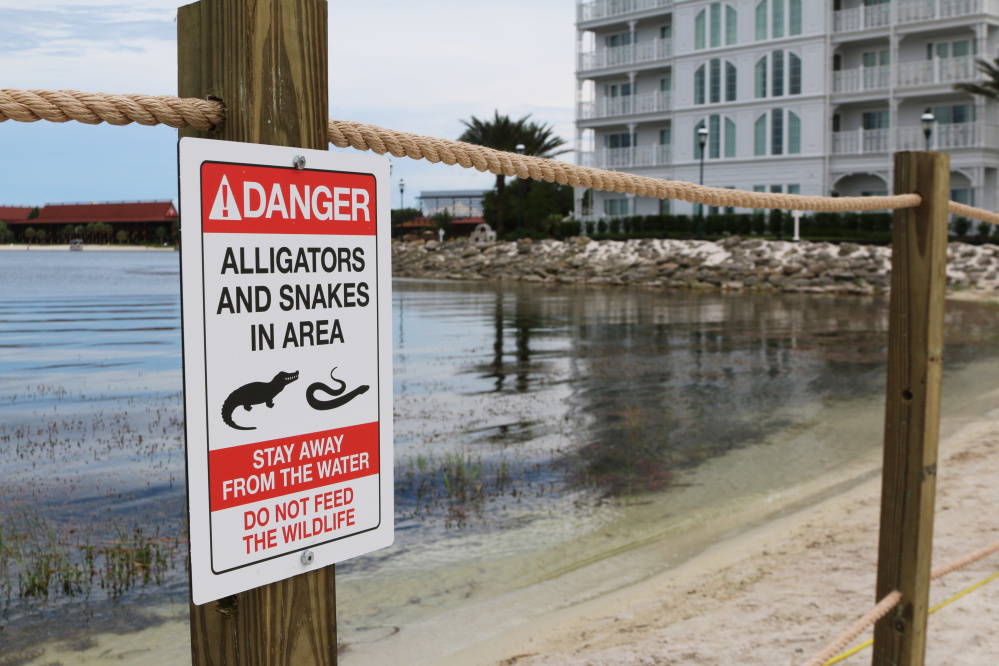A new sign is posted on a beach outside a hotel at a Walt Disney World resort in Lake Buena Vista, Fla., on June 17, after a 2-year-old Nebraska boy was killed by an alligator at Disney World three days earlier.