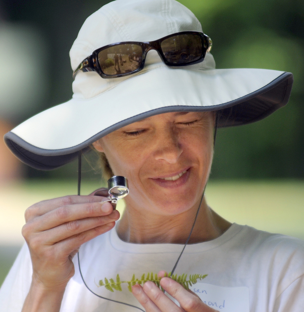 Susan Redmond, of Augusta, examines a fern Sunday during a field trip that was part of the annual meeting of the Kennebec Land Trust in Fayette.