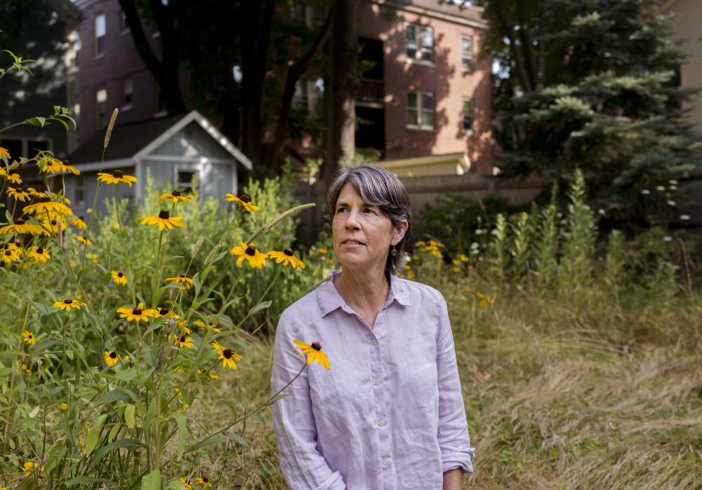 Heather McCargo is working on re-wilding her backyard in Portland's West End. She and her nonprofit Wild Seed Project aim to get more people throughout the state to grow native plants.