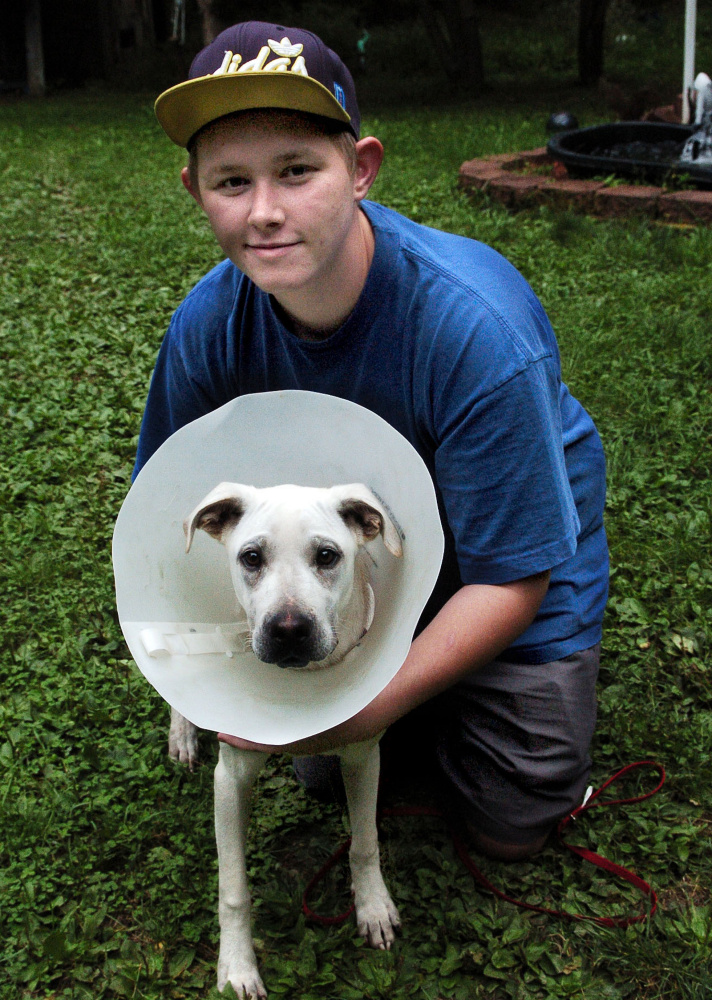Aided by Maine Lost Dog Recovery, Shane Pottle was reunited with his beloved Tucker, who is wearing a collar to prevent him from aggravating a broken leg.