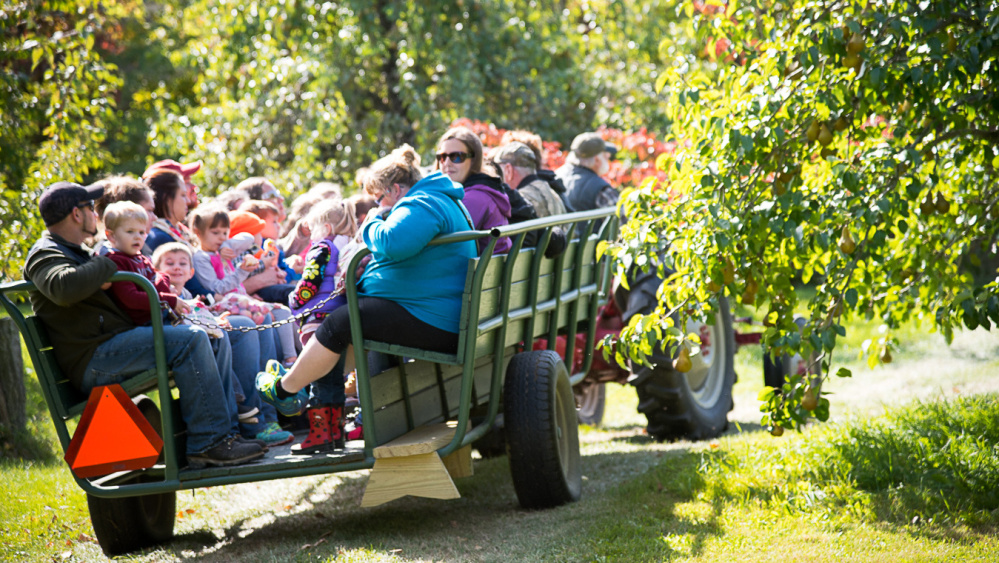 Children and adults from Pittsfield-Manson Pre-K in Pittsfield complete their hayride around The Apple Farm in Fairfield on Friday. thrde lines pls with somethint from story fl  something f from storyef lsefeyssyysy
