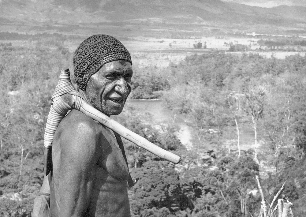 An elder warrior with a stone axe stands over the Baliem Valley in central Papua New Guinea in this Feb. 20, 1962, photo.   A new paper says it found a trace of DNA in native Papua New Guineans that suggests they may have split from Africans 120,000 years ago, <em>Associated Press </em>