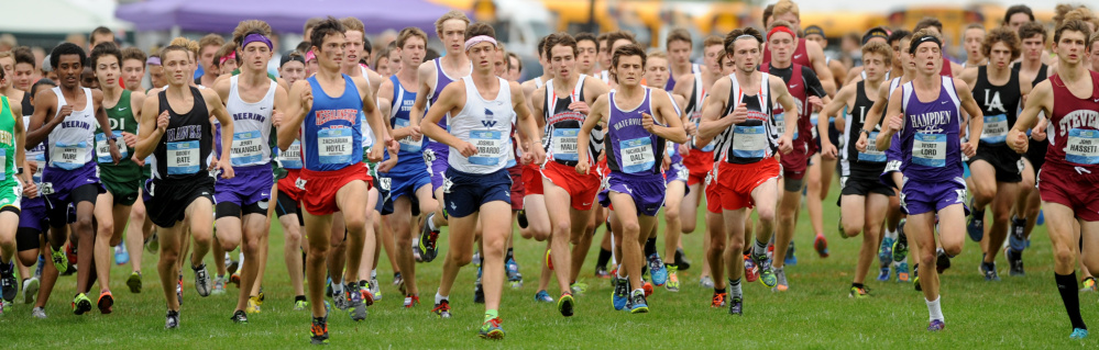 The boys' race begins Saturday as the field leaves the starting line in the 15th annual Festival of Champions cross country event in Belfast.