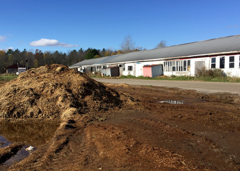 SCARBOROUGH, MAINE - OCTOBER 31: One of a few piles of horse manure near the barns at Scarborough Downs. The track's owners say they have been cited for polluting nearby marshes and must close the barns.  (Photo by Kelley Bouchard/Staff Writer)