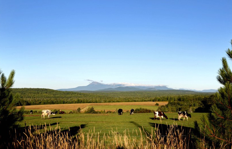 A field in Patten offers a view into the Katahdin Woods and Waters National Monument area, designated this summer by President Obama. Even if Donald Trump reverses the monument designation, it won't bring back the days when the region's paper mills were booming or change the need to diversify northern Maine's economy.