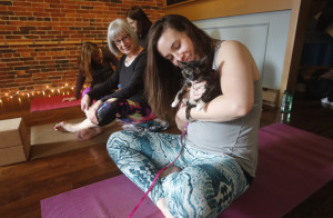 Lauren Bean, with Carla Mahaney, gives a kitten some love before yoga class Saturday at the Samudra Studio in Saco. Five kittens roamed about during the session to keep away negative energy.