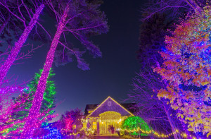 Coastal Maine Botanical Gardens' annual Gardens Aglow event is promoted as the state's largest LED holiday light display.