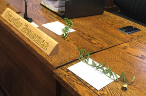 Strimling left an actual olive branch on the dais for each councilor. Some have clashed with the mayor over city health services and a tax break for businesses.