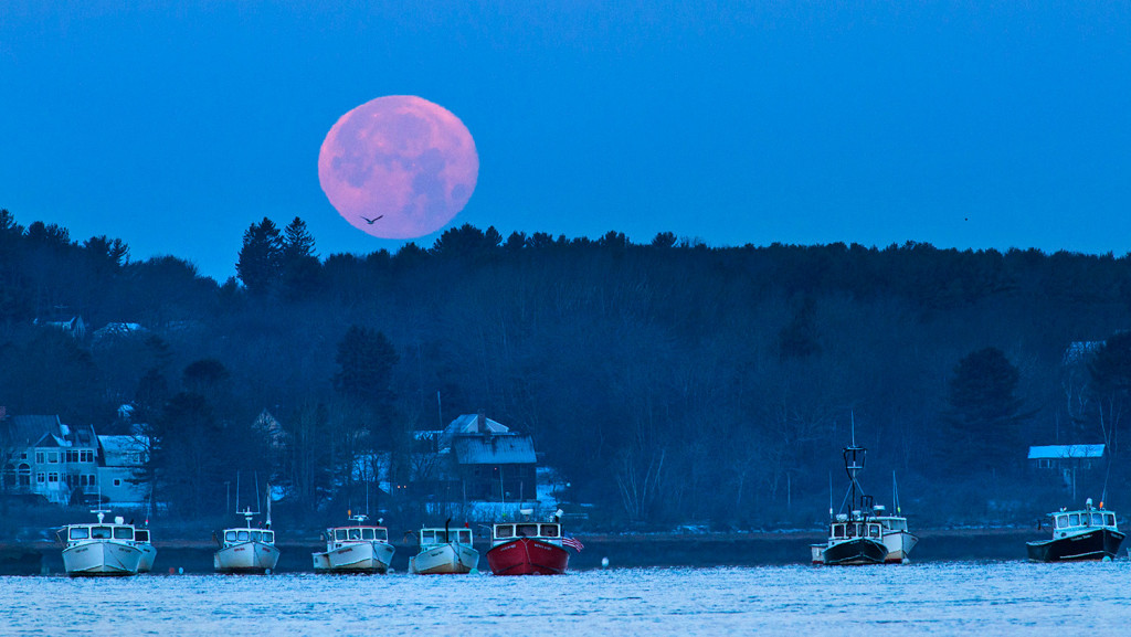 "Fishing boats point the way of the tide in the Scarborough River under a full moon at Pine Point on Wednesday morning. It was the third consecutive supermoon. The term ""supermoon"" is used for those full moons that occur when the distance between Earth and the moon is less than is typically the case."