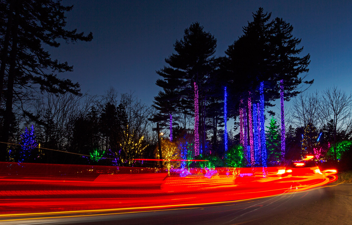 Gardens Aglow At Coastal Maine Botanical Gardens Press Herald
