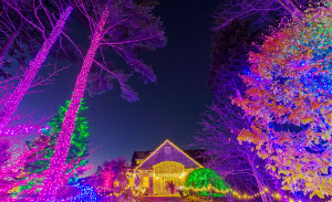 Coastal Maine Botanical Gardens is brightly lit for Gardens Aglow, its celebration of the holiday season.