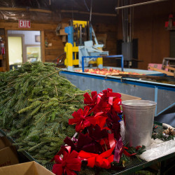 Parts for wreaths lay in the back room at the Gile's Family Farm store, where employees and the owners are prepping for an open house this weekend. On Friday night 200 wreaths were stolen off a trailer behind of the store. (Photo by Brianna Soukup/Staff Photographer)