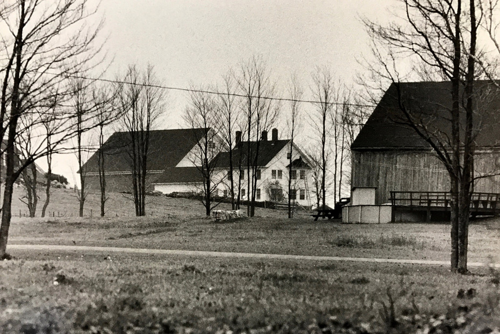 Some of the buildings at Pineland Hospital and Training Center are shown in an undated photo. By the early 1990s, the state decided to close Pineland, and it took two years to transfer the remaining 300 or so clients to community care.