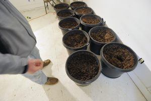 Dawson Julia looks over soil cooking in a room at East Coast CBDs. Julia also uses reclaimed water on his plants. He is one of five growers in MOFGA's trial for a proposed clean cannabis program.