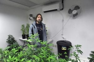 Dawson Julia, a medical marijuana caregiver, stands in a grow room in Unity where a heat pump is connected to a bucket that collects expended water, one of a number of sustainability practices employed at East Coast CBDs.