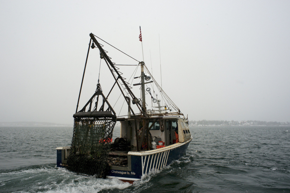 Scallop fishing in the Gulf of ME: A David-Goliath story