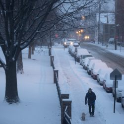 Fresh snow falls in the early morning on Wednesday as a man walks his dog near the Reiche School in Portland.