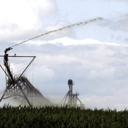 Liquid manure is sprayed to fertilize crops on a farm in Union County, Ohio. With runoff from fertilizer feeding algae that's fouling Lake Erie, Ohio will be requiring certification for putting fertilizer on fields.