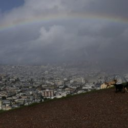 Dogwalker Vincent Flores looks toward a rainbow from Bernal Heights Hill in San Francisco on Monday. The tail end of a punishing winter storm system lashed California with thunderstorms and severe winds Monday after breaking rainfall records, washing out roads and whipping up enormous waves.
